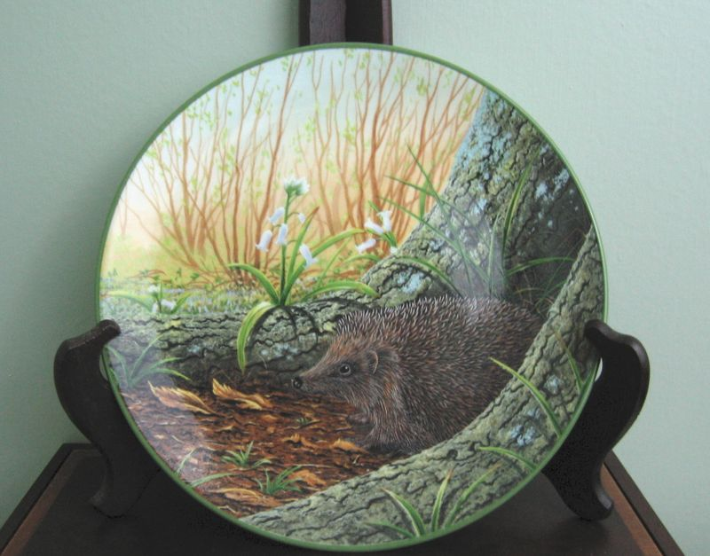 Waryhedgehogplate