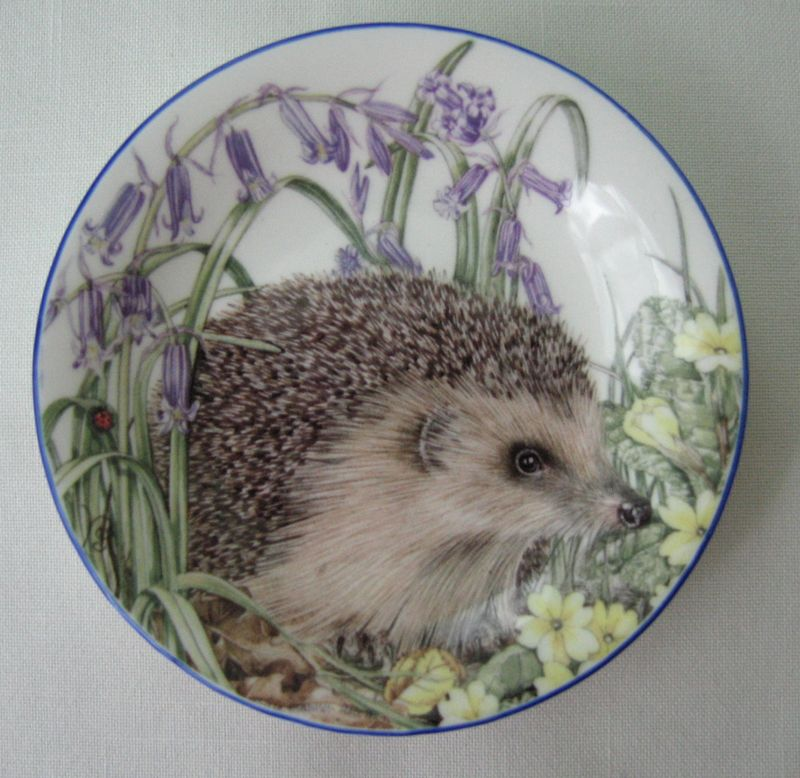 Englishhedgehogplate
