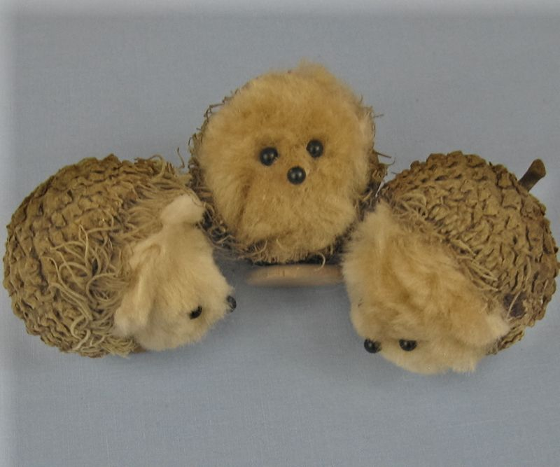 Hedgehogburtrio