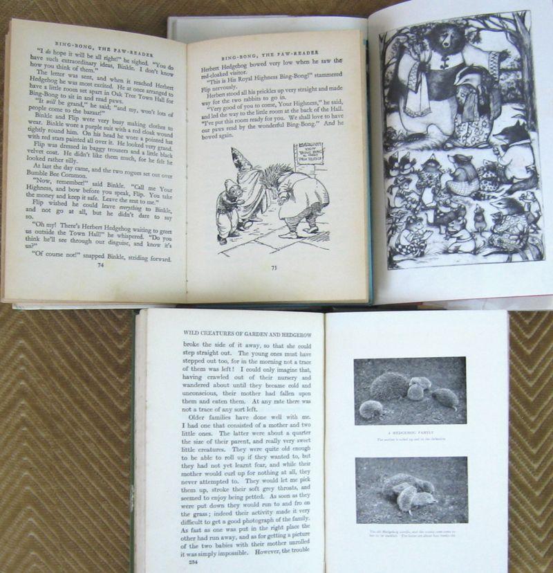 Hedgehogusedbooks