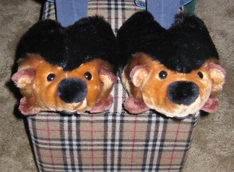 Hedgehoghouseshoes