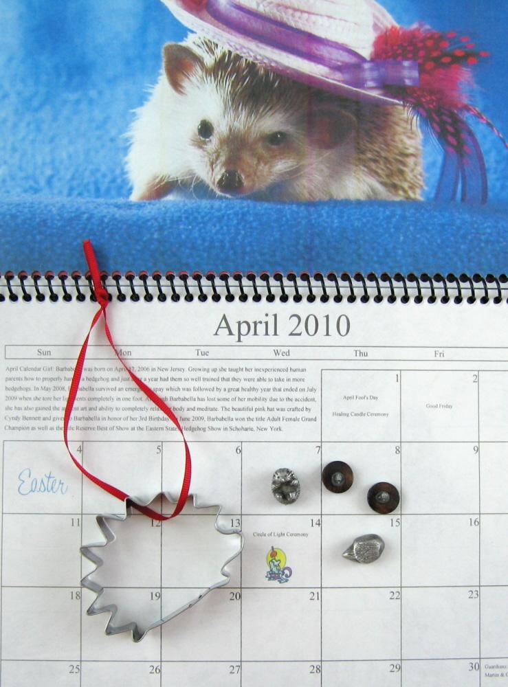 2009showhedgehogs