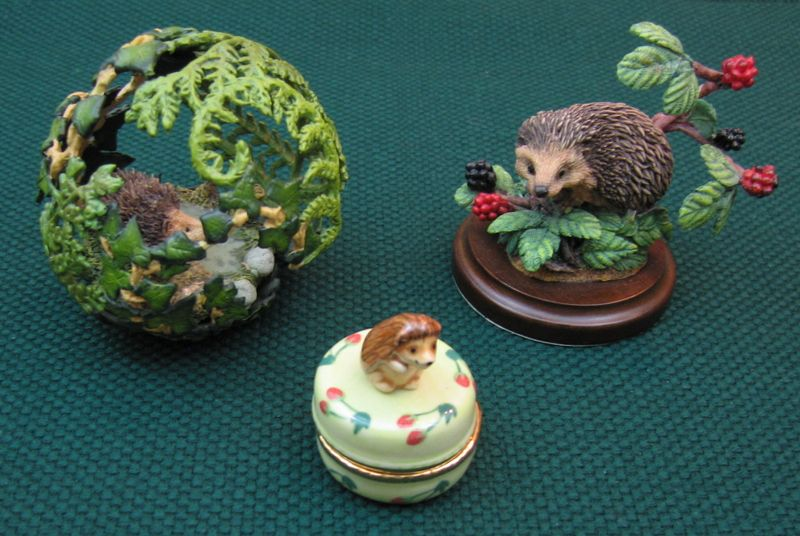 Delicatehedgehogs