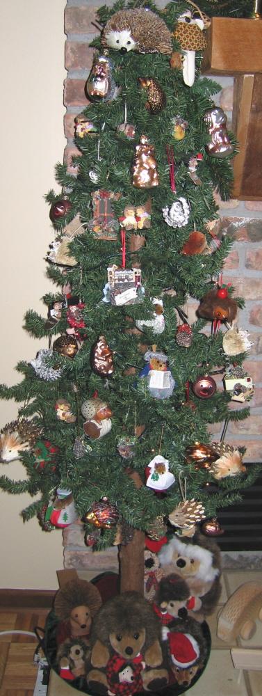2009hedgehog tree3