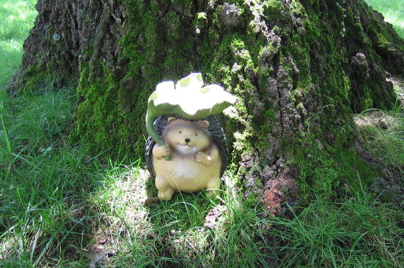 Leafhedgehog