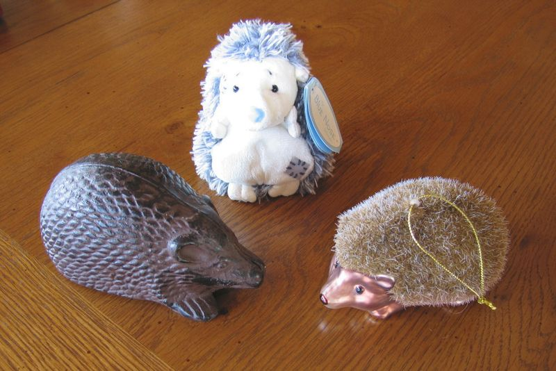 Novemberhedgehogs