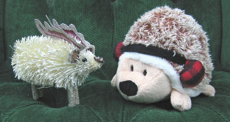 Hedgehogreindeer