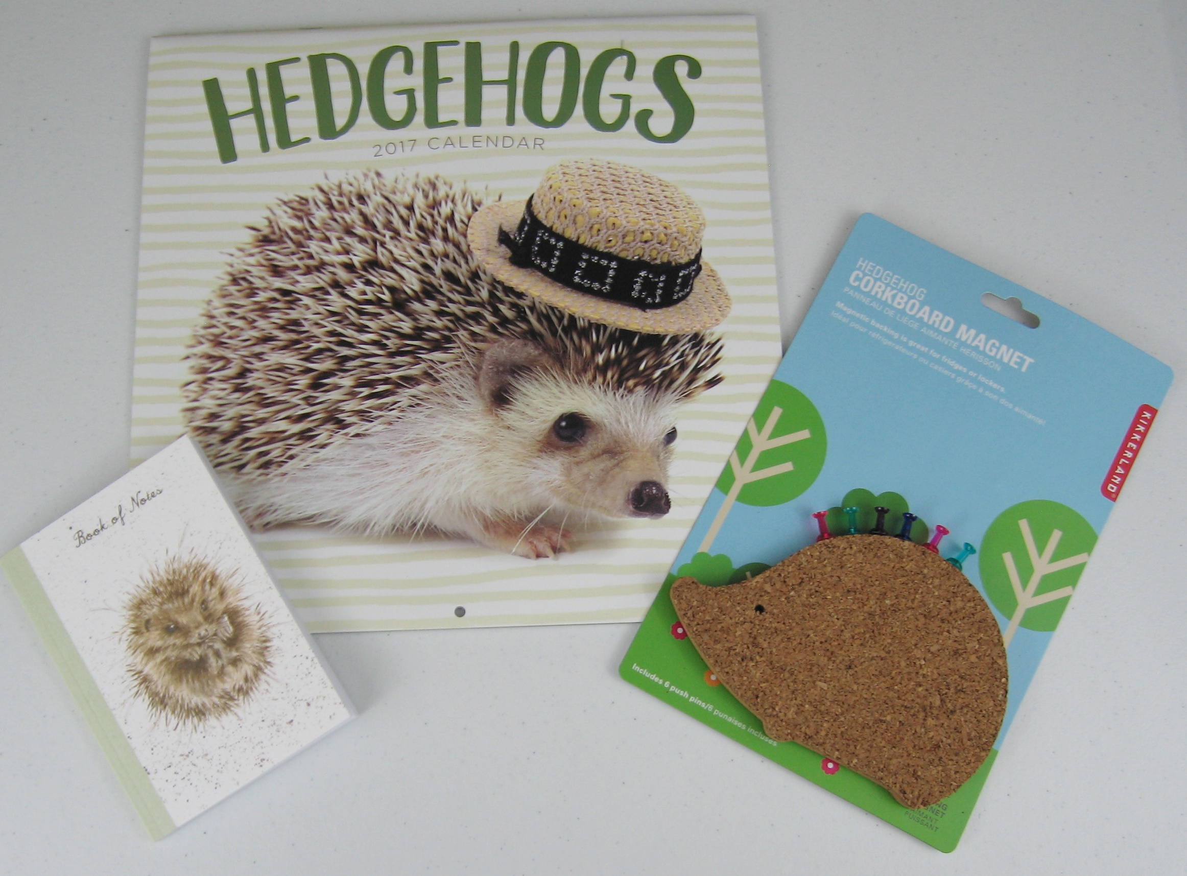How To Make A Book Hedgehog ~ Houseful of hedgehogs my hedgehog collection