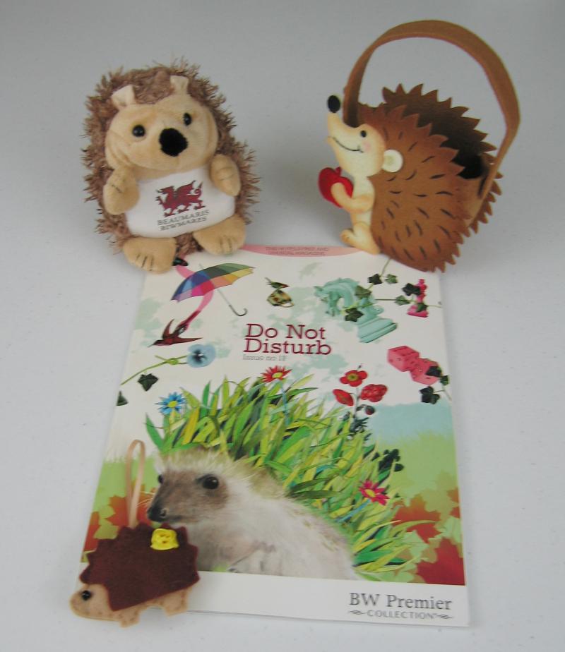 Waleshedgehogs