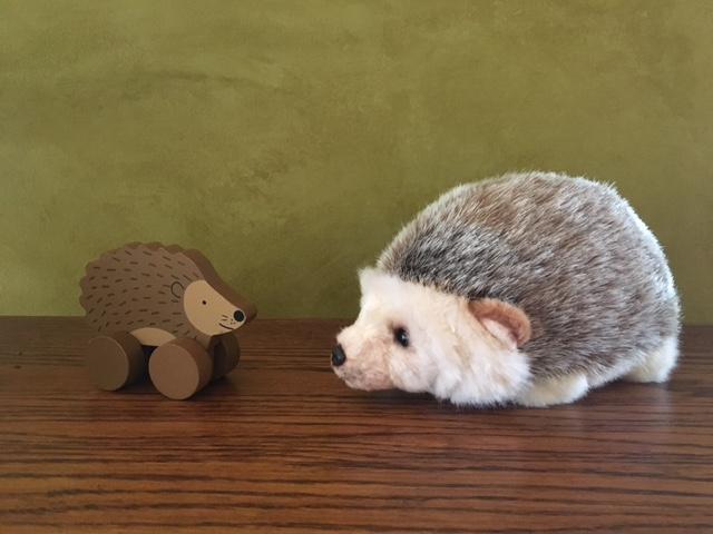 2hedgehogs